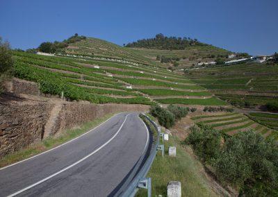 Weinbau, Portugal