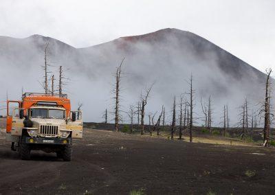 Toter Wald, Kamtschatka, Russland