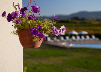 Hotel im Weingarten, Chile