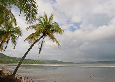 Palmenstrand, Costa Rica