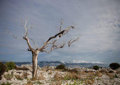 Karge Landschaft, Kroatien