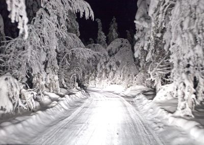 Särkimukka, Schweden