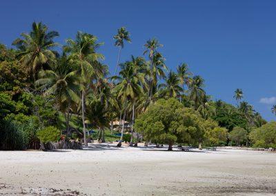 Strand, Mafia Island, Tansania